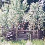 Buried Treasures of Alabama