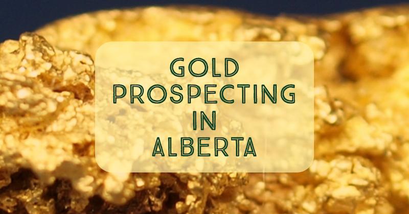 Gold Prospecting Alberta Rivers
