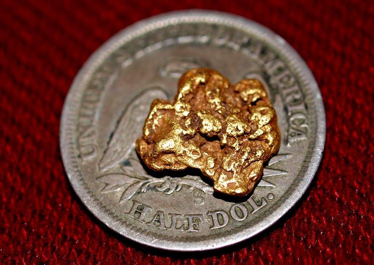 Gold found on a Mining Claim