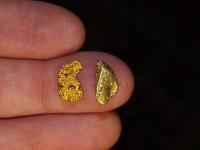 Gold Nuggets Discovered