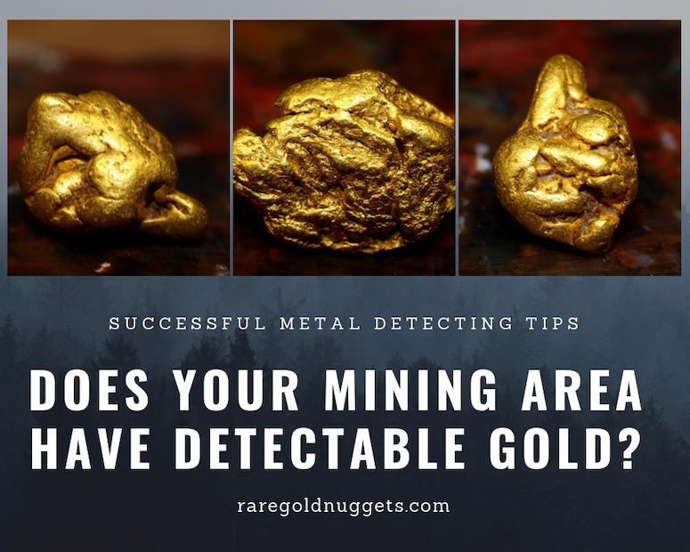 metal detector prospecting gold