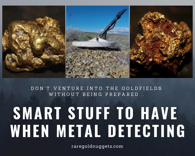 Metal Detecting Goldfields