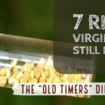 Virginia Gold Panning Places