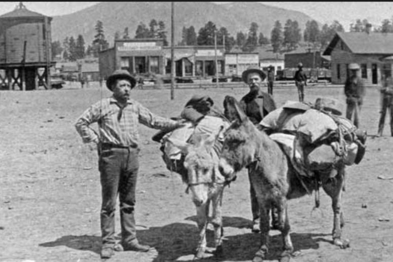 Miners and Burro
