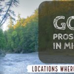 Prospecting Gold Michigan