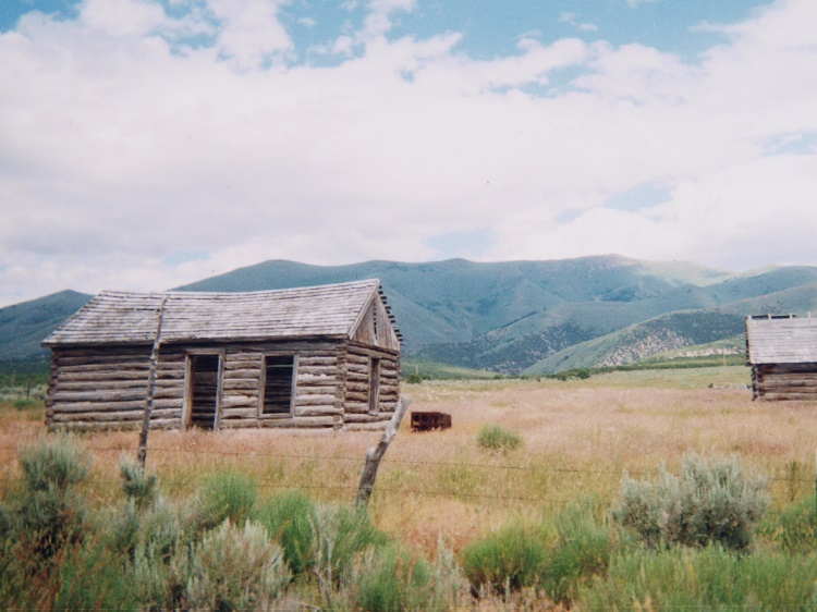Old Homestead in Nevada