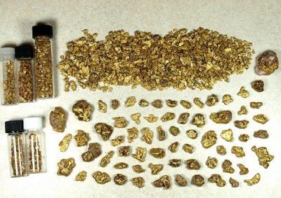 Gold Nuggets found in Alaska.