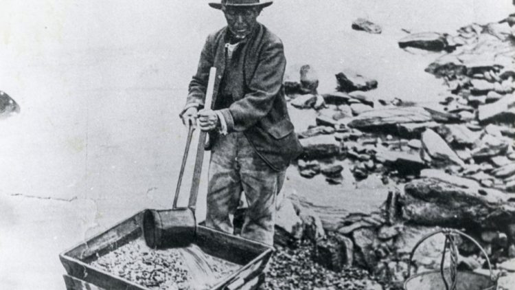 Chinese during the Gold Rush