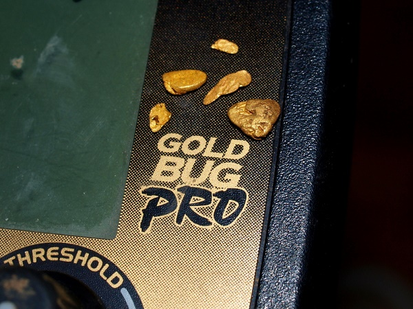 Gold Bug Pro Gold Nuggets