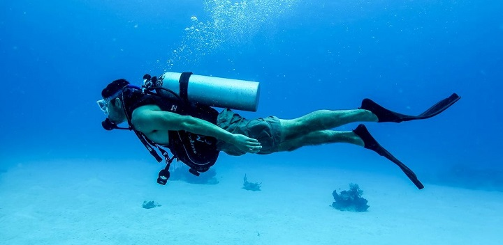 Divers Hunting Fossils in Florida