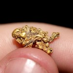 Nevada Gold