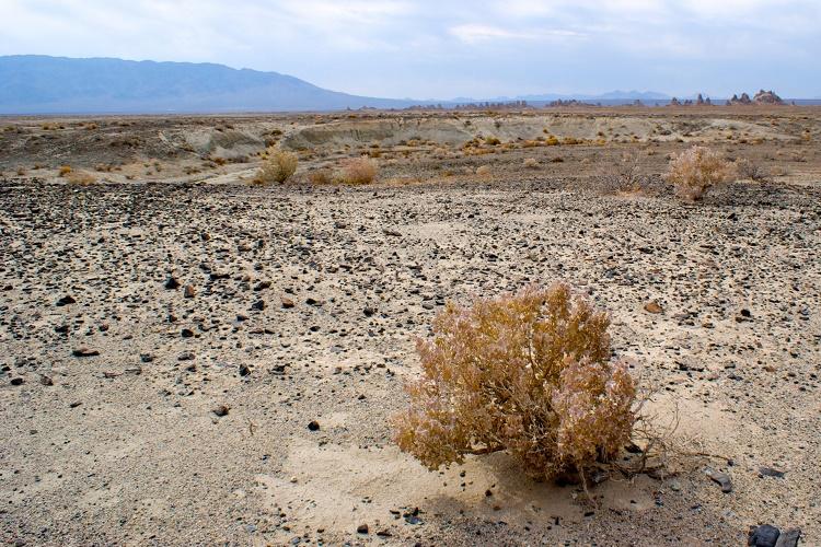 Hunting for Meteorites