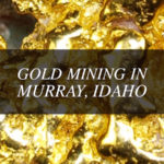 gold Idaho