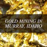 gold Idaho