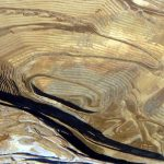 Gold Mine in Nevada