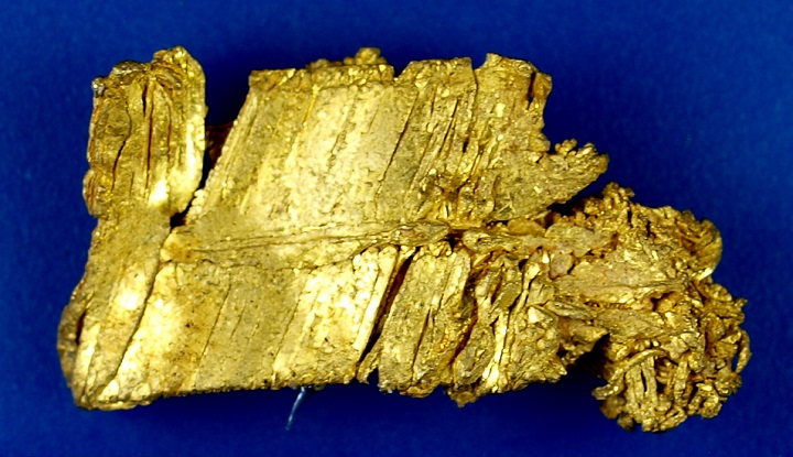 Rare Gold Nugget from Nevada